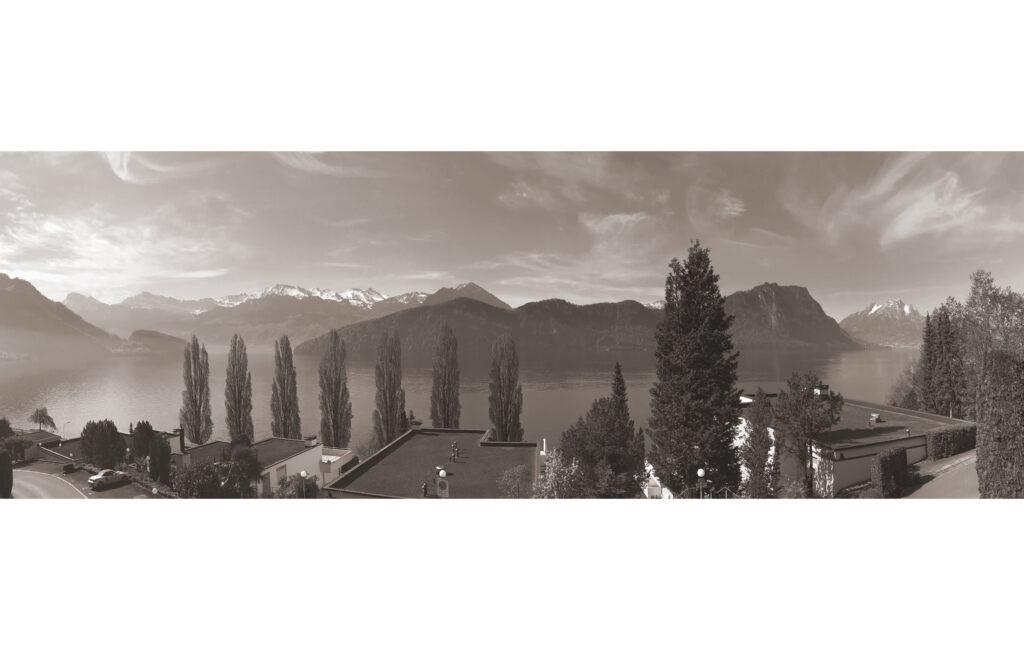 8-Panorama